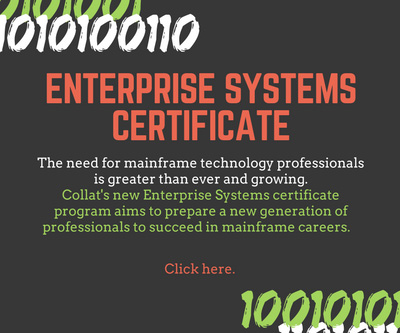 Enterprise Systems Certificate