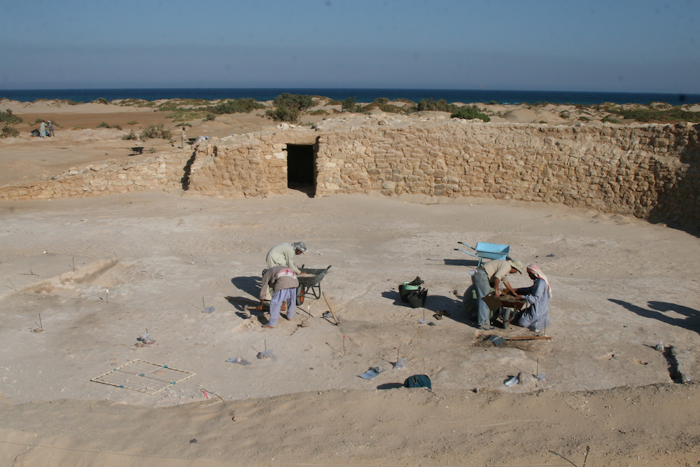 UAB/SCA 2008 expedition to Ras Budran (South Sinai, Egypt): Project director, G. Mumford, and Bedouin workers sieving materials from excavation grid across floor surface associated with late Old Kingdom fort in Sinai (Photo: P. Carstens).