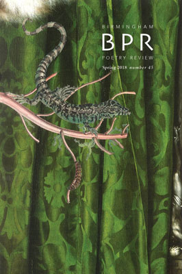 Cover of BPR 45 (2018), an illustration of a lizard on a branch in front of a green brocade curtain.