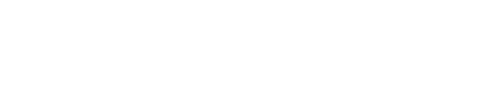 uab institute of human rights
