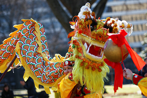 A dragon puppet at the 2013 Chinese New Year celebration.