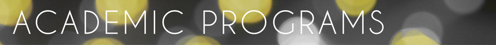 This is a banner on the Academic Programs page.