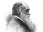 Illustration of Charles Darwin.