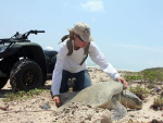 Biology alumna helps rescue and release thousands of cold-stunned sea turtles