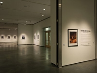 AEIVA Receives Significant Gift of Works by David Levinthal