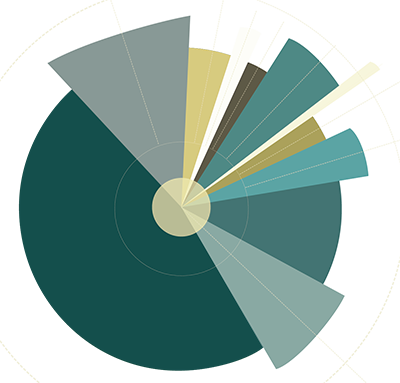 Pie-chart graphic (illustration, no data).