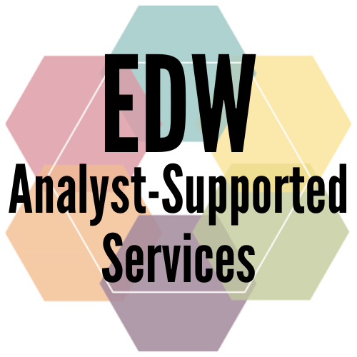 EDW Analyst-Supported Services: Complicated Queries Made Simple