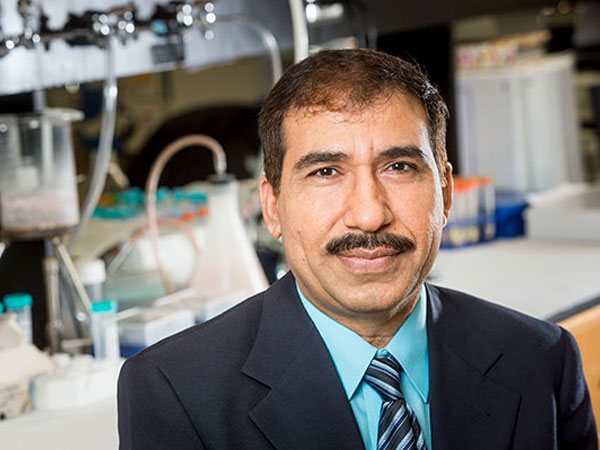 Javed named director of Global Center for Craniofacial, Oral and Dental Disorders