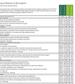 UAB Survey Summary Sheet thumbnail