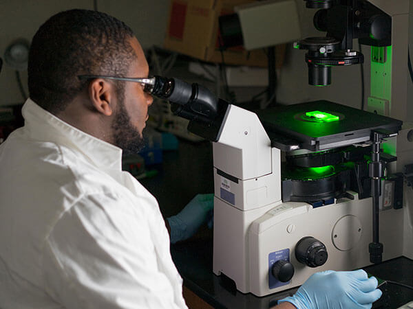 BME ranks in top five in NIH funding for fourth straight year