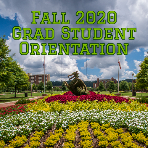 Grad School and GSG host Fall 2020 Virtual Orientation