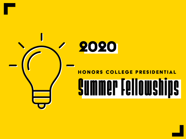 2020 Honors College Presidential Summer Fellowships blaze new trails