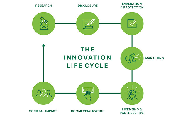 Innovation Life Cycle infographic.