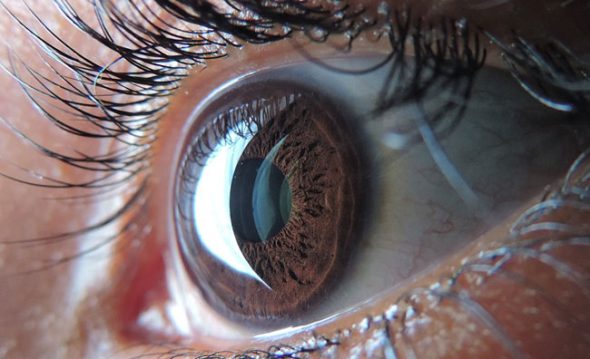 Close up image of an eye.