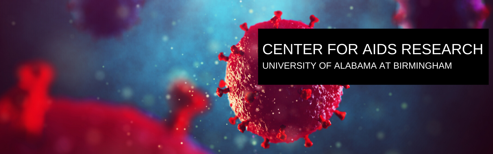 CENTER FOR AIDS RESEARCH
