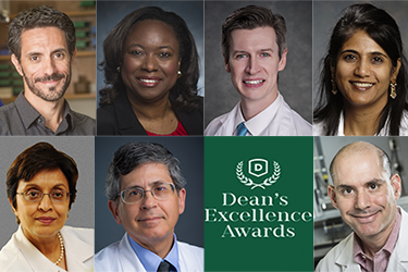 2018 Dean's Excellence Awardees