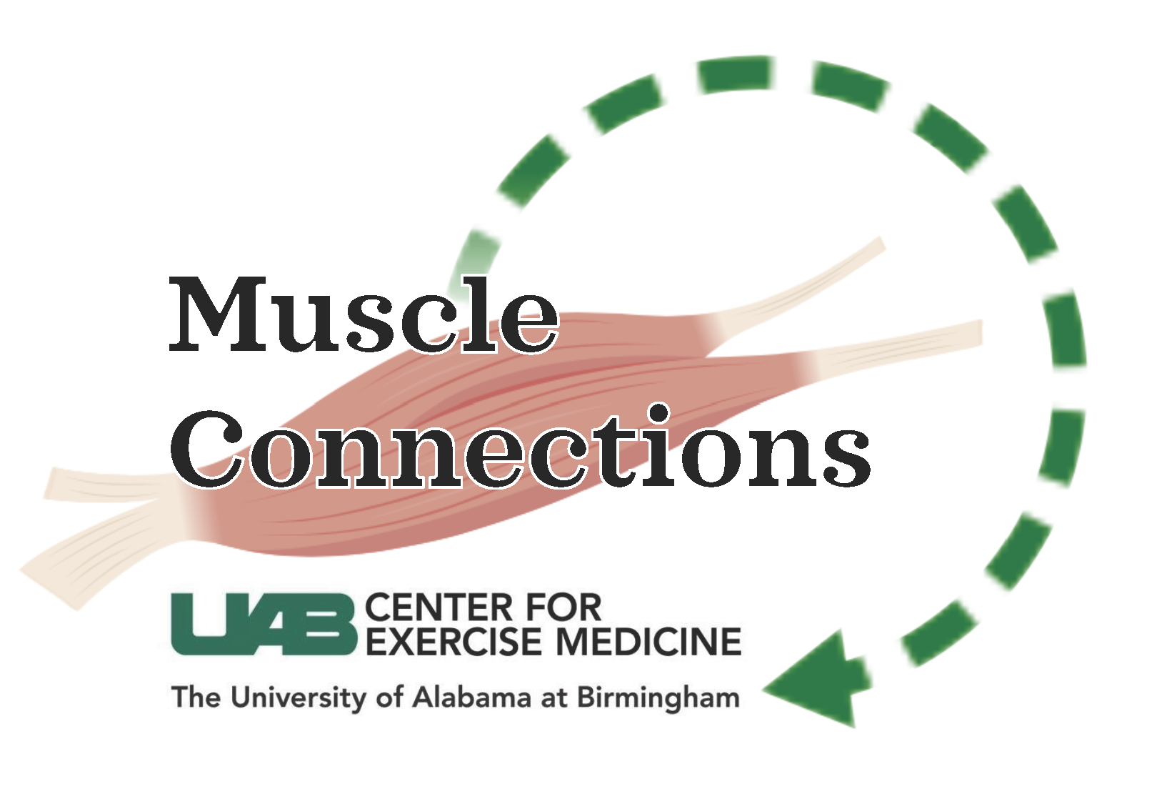 Introducing Muscle Connections Journal Club