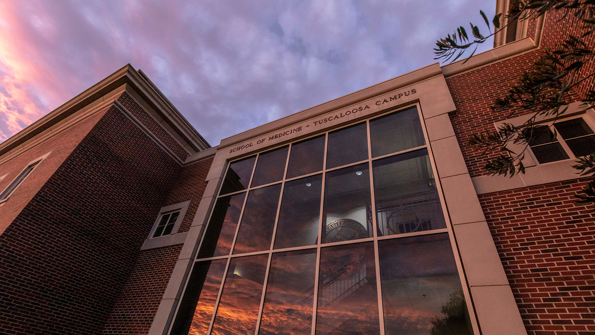 tuscaloosa regional campus building at sunset