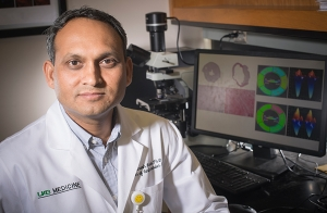 Mouse healing may reveal targets to delay or prevent human heart failure