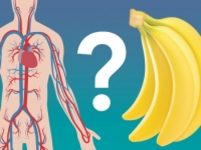 A need for bananas? Dietary potassium regulates calcification of arteries
