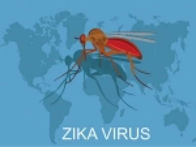UAB observational study of Zika virus infection during pregnancy begins in Brazil