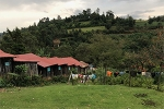 Faculty, fellows and residents provide emergency medicine care in Bomet, Kenya