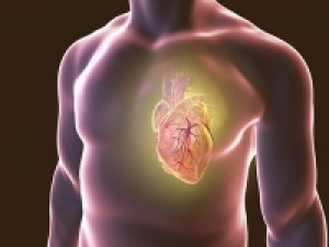 A bioactive molecule may protect against congestive heart failure after heart attacks