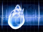 Cardiovascular Disease receives T32 grant for translational research in heart failure