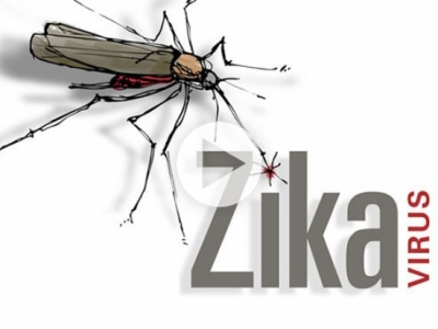 Zika, pregnancy and microcephaly: What you need to know