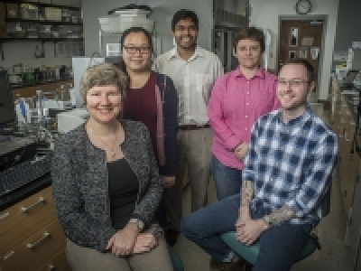 UAB creates triple-threat cancer-fighting polymer capsules for guided drug delivery