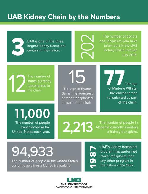 100 kidney numbers