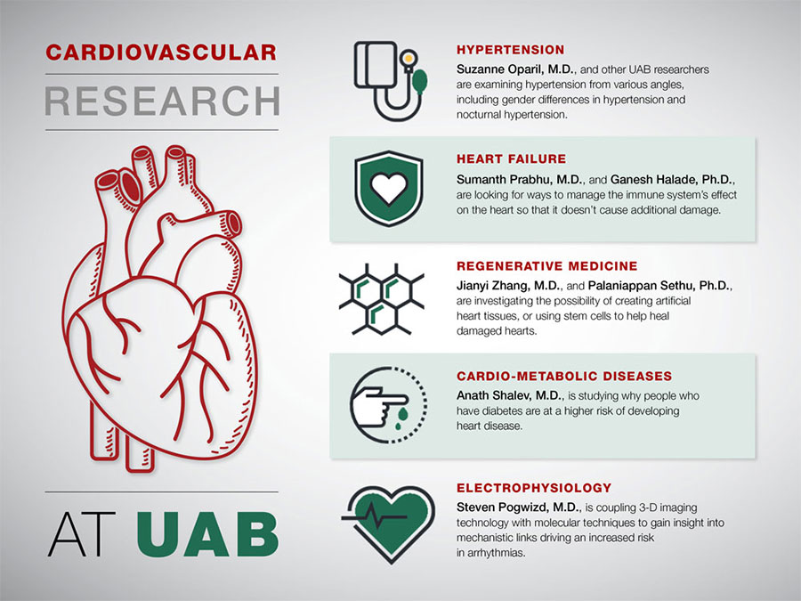 Research paper on cardiovascular disease