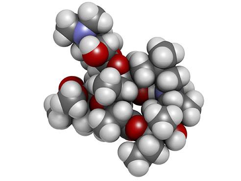 Drug classification for azithromycin