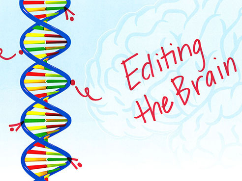 editing the brain