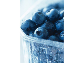 PHOTO-Blueberries_site