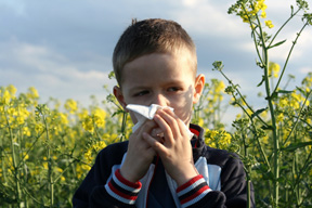 allergies_feature_site