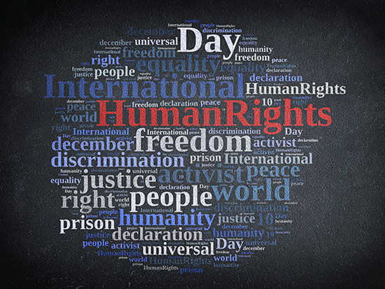 human rights stream