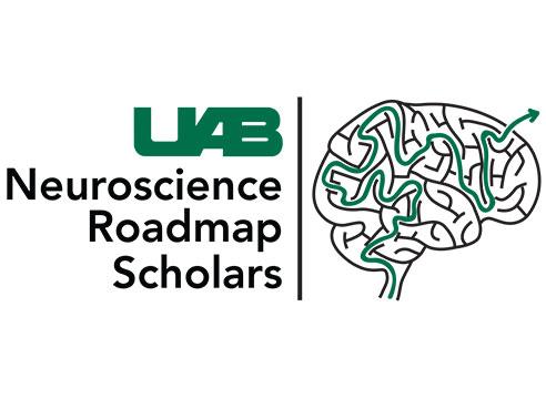 Neuroscience university gide