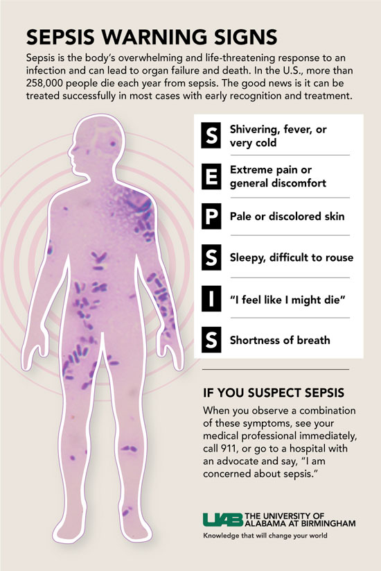 sepsis graphic web
