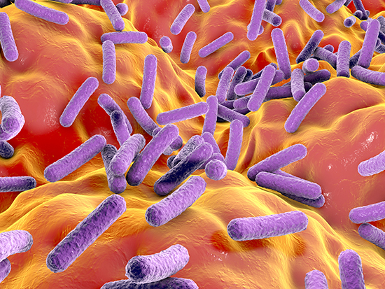 Study outlines genetic factors involved in shaping the human gut microbiome