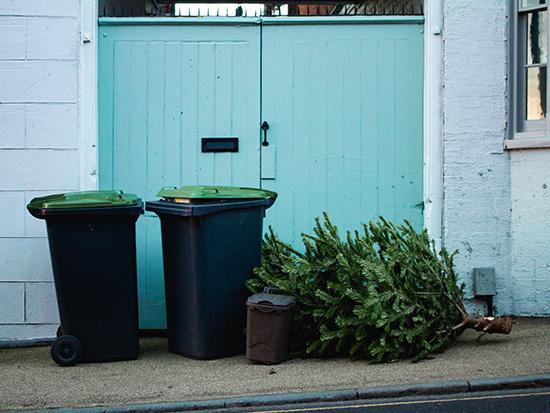 Rocking around the recycle bin