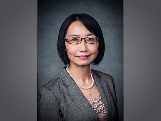 Chen wins a VA Senior Research Career Scientist Award