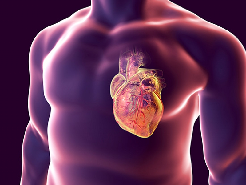 Researchers to study feasibility of PET/MRI technology in cardiac sarcoidosis
