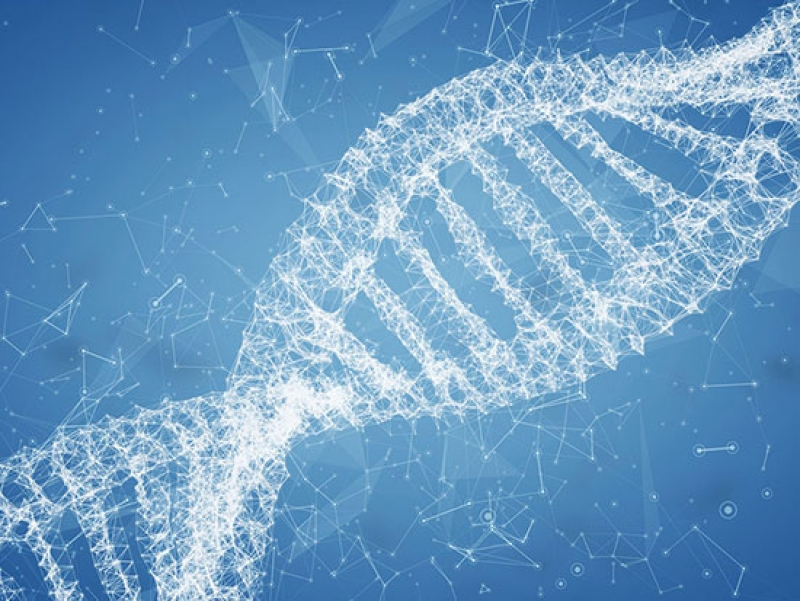 Weaving new materials with DNA strands