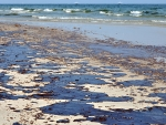 UAB study suggests oil dispersant used in Gulf oil spill causes lung and gill injuries to humans and aquatic animals, also identifies protective enzyme