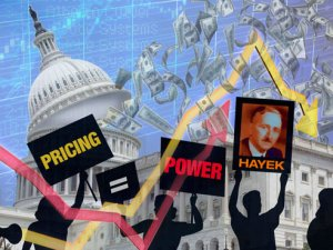 Who is Hayek? Examining an economic expert