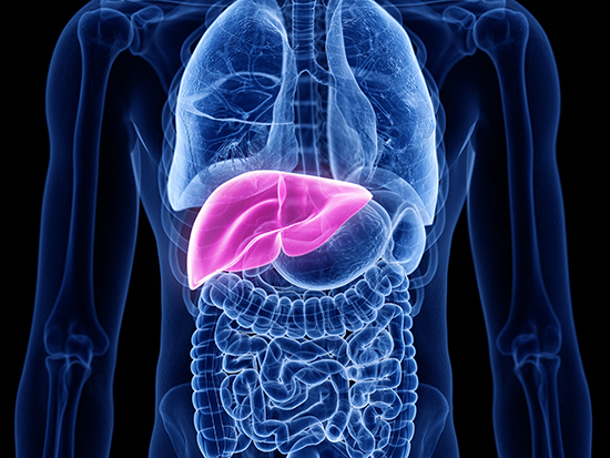 UAB startup company receives FDA clearance for liver imaging software