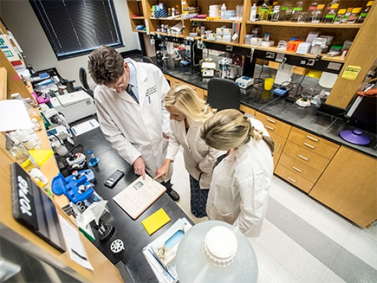UAB research makes Discover Magazine's top 100 stories of the year