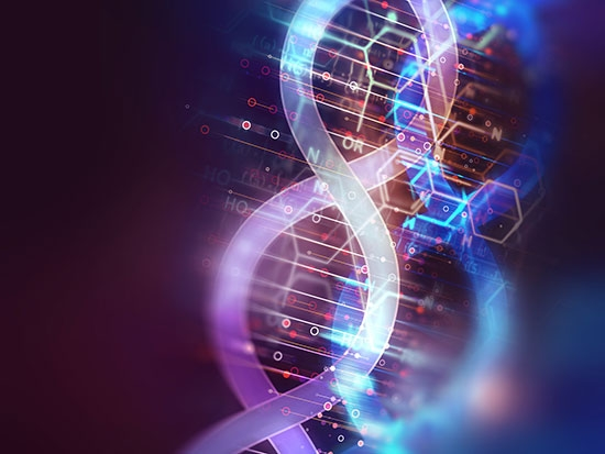 New bioinformatics program is the first of its kind in the state
