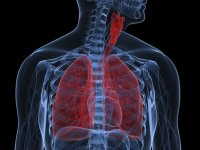 Commonly prescribed antibiotic reduces acute COPD attacks